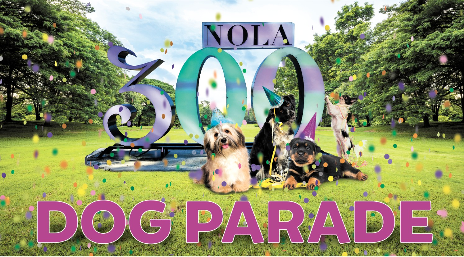 new orleans dog